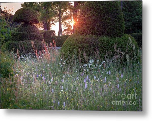 Wildflower Meadow At Sunset, Great Dixter Metal Print
