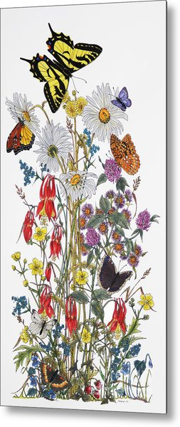 Wildflowers And Butterflies Of The Valley Metal Print