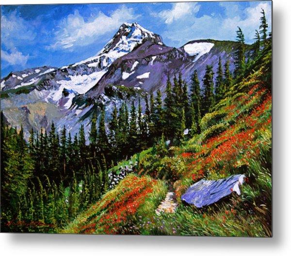 Wildflowers Mount Hood Metal Print by David Lloyd Glover