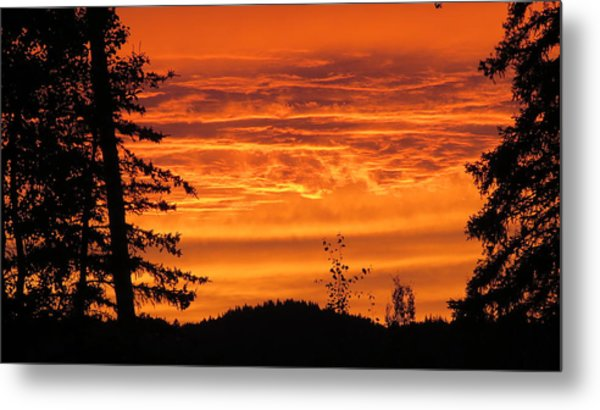 Williams Lake Metal Print
