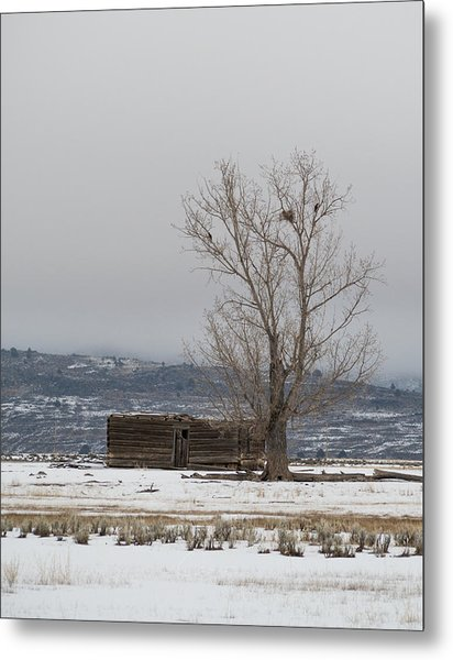 Willow Creek Cabin Metal Print