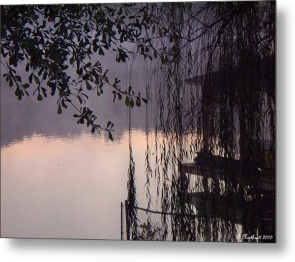 Willow's Dawn Metal Print