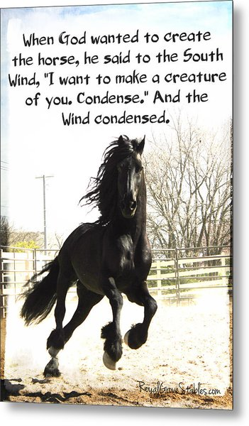 Wind In Your Mist Metal Print