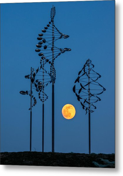 Wind Sculptures At Wilkeson Pointe Metal Print