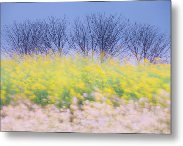 Metal Print featuring the photograph Wind Strokes by Awais Yaqub