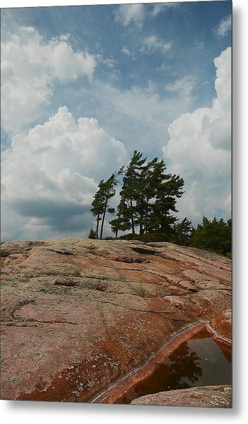 Wind Swept Trees On Rocks Metal Print
