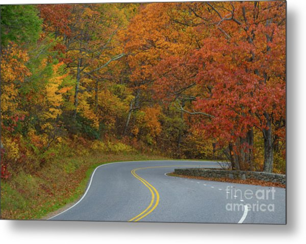 Winding Road In Autumn  Metal Print