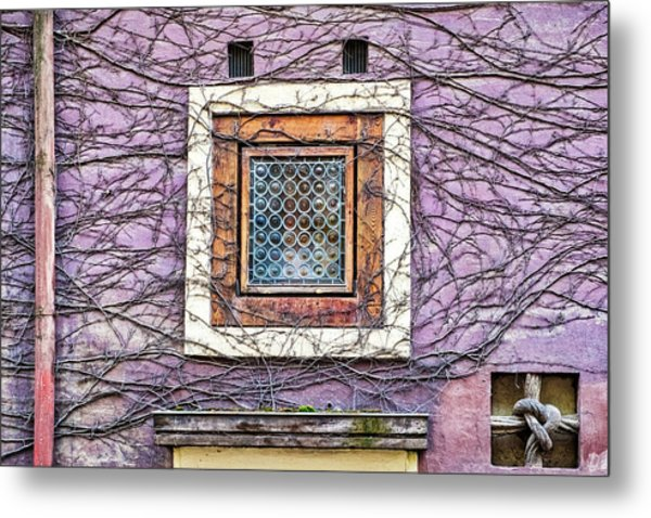 Window And Vines - Prague Metal Print