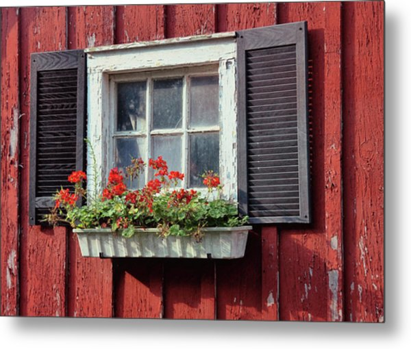 Window Box Metal Print by Dressage Design