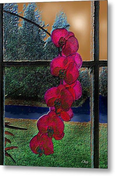 Window Dressing Metal Print by Gordon Beck