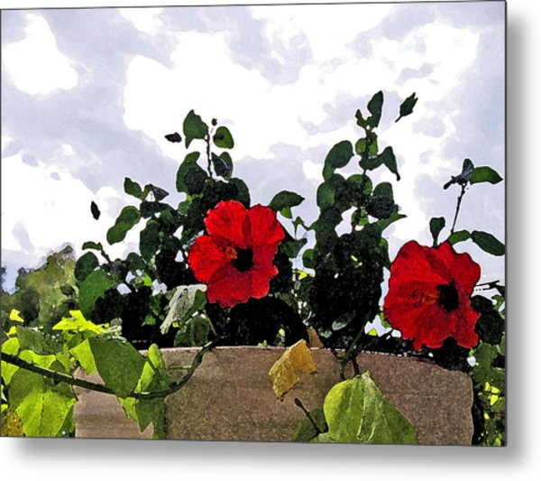 Window Flowers Metal Print by James Granberry