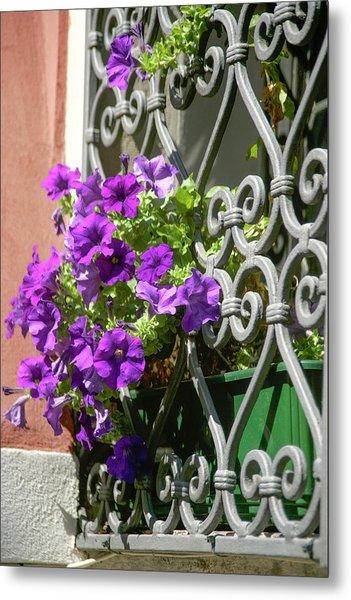 Window In Bloom Metal Print