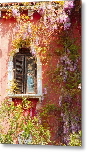 Window In Venice With Wisteria Metal Print by Michael Henderson