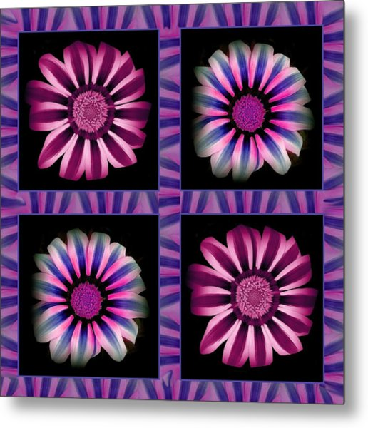 Windowpanes Brimming With  Moonburst Stripes Of Flowers - Scene 3 Metal Print by Jacqueline Migell
