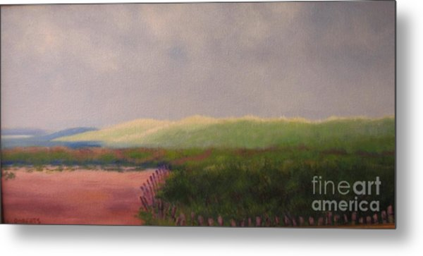 Windswept Dunes Metal Print by Laura Roberts