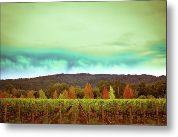 Wine In Time Metal Print