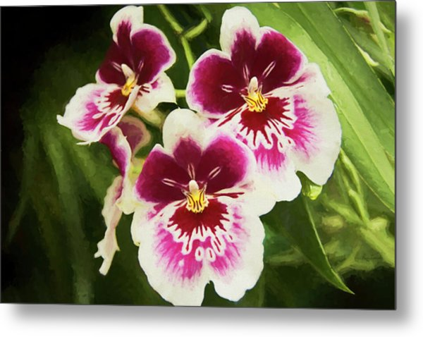 Metal Print featuring the photograph Wine Orchids- The Risen Lord by Penny Lisowski