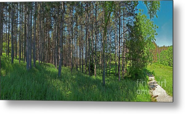 Wingate Prairie Veteran Acres Park Pines Crystal Lake Il Metal Print