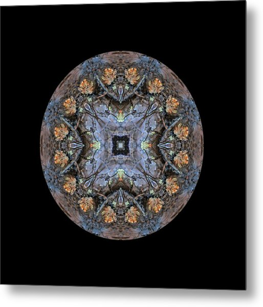 Winged Creatures In A Star Kaleidoscope #2 Metal Print