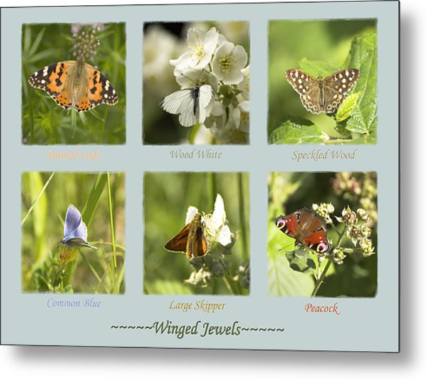 Winged Jewels Metal Print
