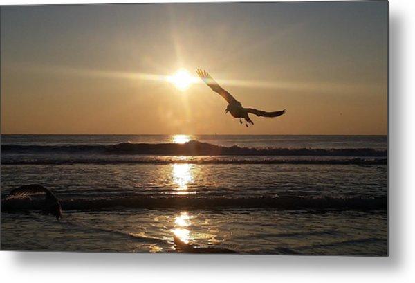 Wings Of Sunrise Metal Print