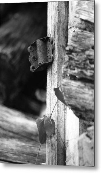 Winslow Cabin Door Detail Metal Print