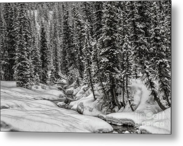 Winter Alpine Creek II Metal Print