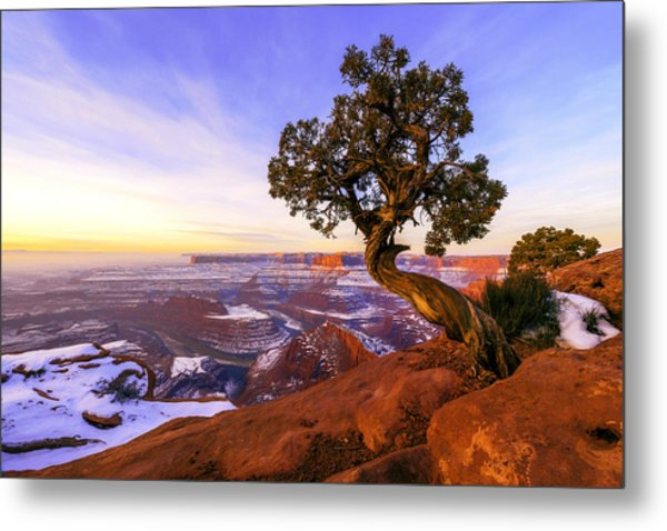 Winter At Dead Horse Metal Print