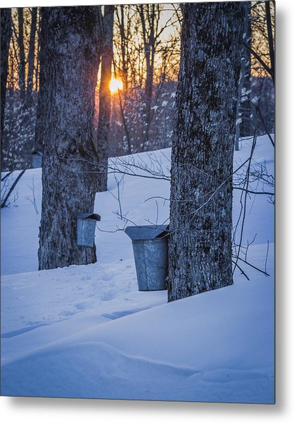 Winter Buckets Metal Print