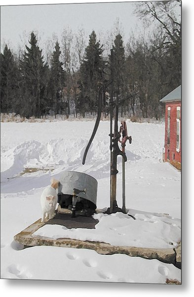 Winter Cat At The Pump Metal Print by Laurie With