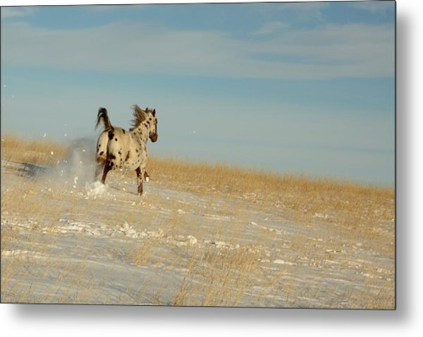 Winter Charger Metal Print