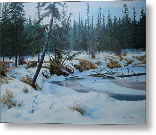 Winter Creek Metal Print