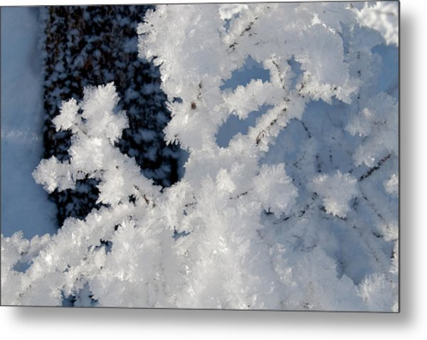 Winter Crystal Metal Print