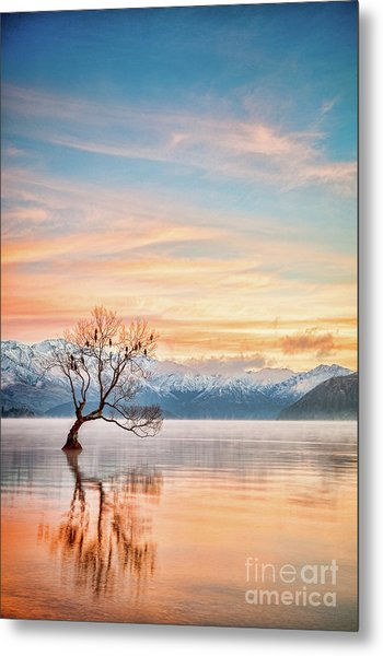 Winter Dawn, Lake Wanaka Nz Metal Print