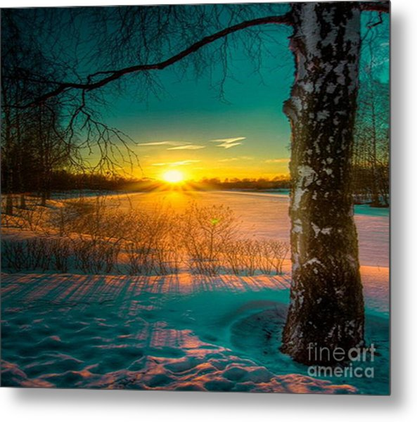 Winter Delight In British Columbia Metal Print