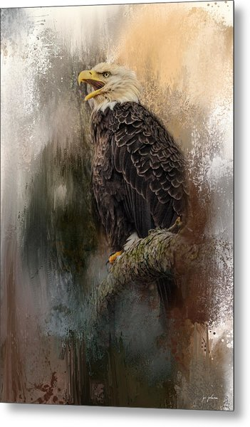 Winter Eagle 3 Metal Print