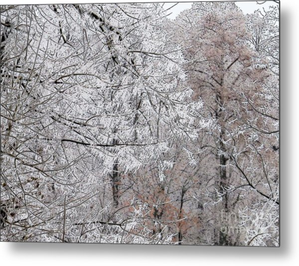 Winter Fantasy Metal Print