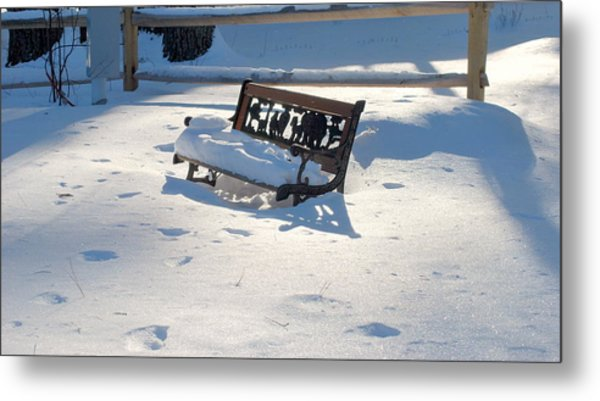 Winter Garden Metal Print
