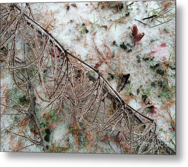 Winter Ground  Metal Print