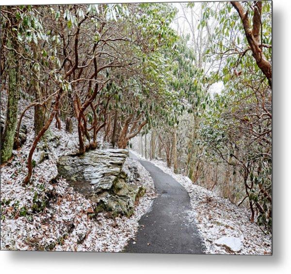 Winter Hiking Trail Metal Print