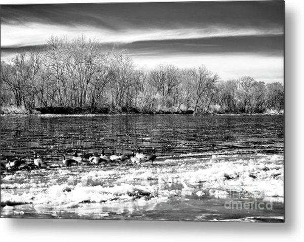 Winter In The Delaware Valley Metal Print by John Rizzuto