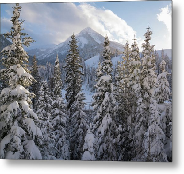 Winter In The Wasatch Metal Print