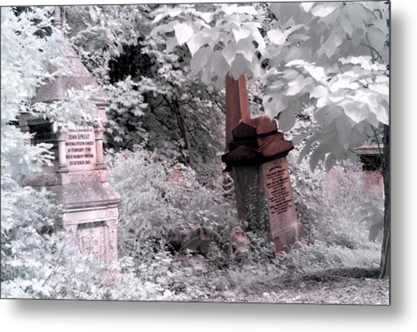 Winter Infrared Cemetery Metal Print