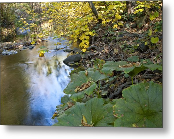 Winter Is Coming On Rock Creek Metal Print by Charlie Osborn