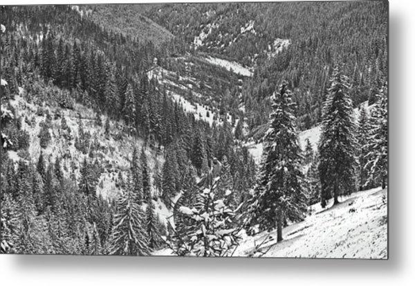 Winter Landscape In Giurgeu Mountains Metal Print by Gabriela Insuratelu