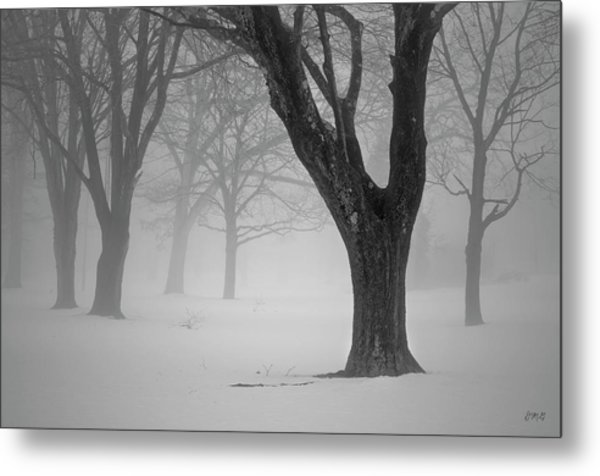 Winter Landscape V Metal Print