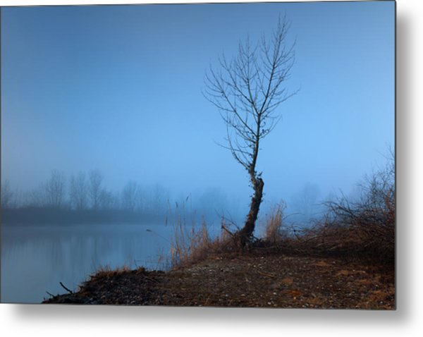 Winter Loner Metal Print