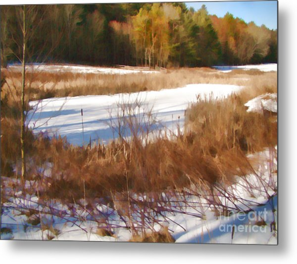 Winter Marsh Metal Print