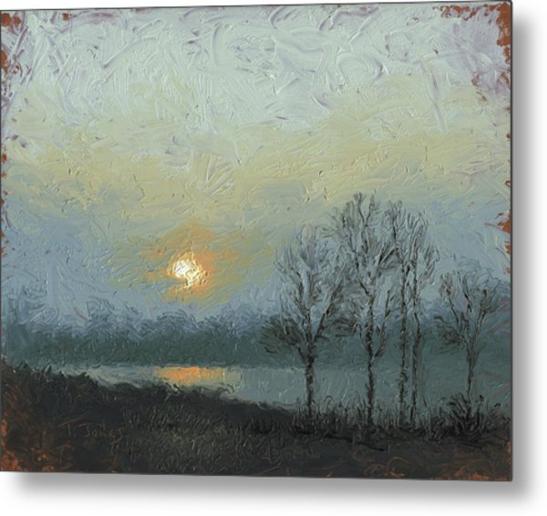 Winter Mist Metal Print by Timothy Jones