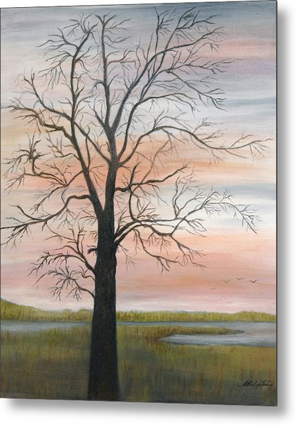 Winter Mood Metal Print by Shirley Lawing